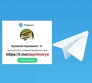 В течение прошедшего года аудитория Законодательного Собрания Приморского края в социальных сетях выросла более чем в 10 раз